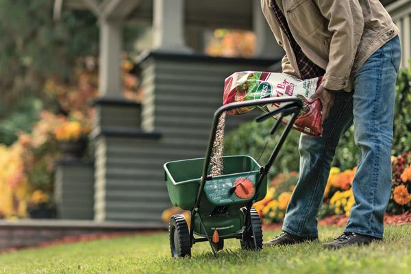 fall-turf-lawn-care