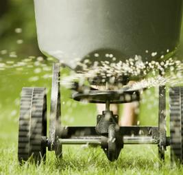 grass-Fertalizing-seeding-Kelowna