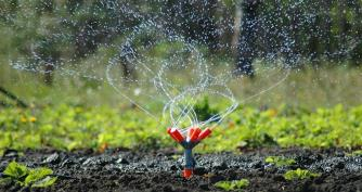 Sprinkler installation and repair Kelowna