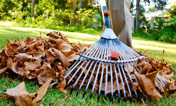 Kelowna-fall-yard-cleanup