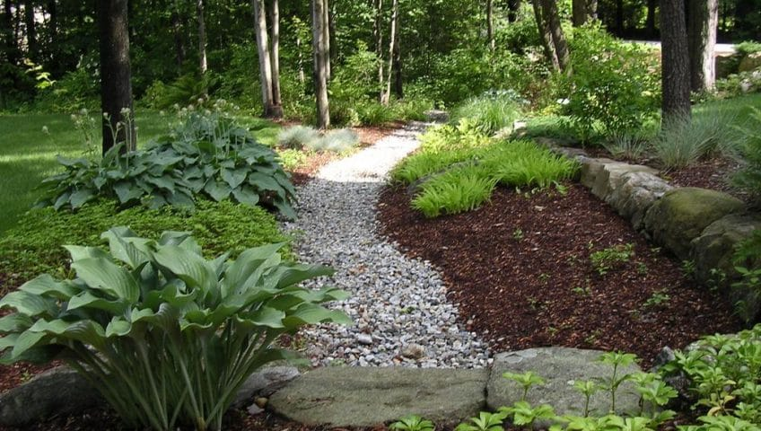 landscaping shady areas