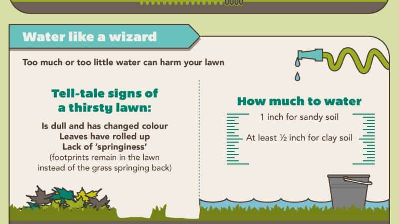 Water-lawn-properly-kelowna