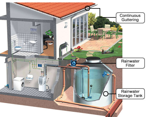 rainwater collection ideas